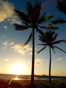 Lever-de-soleil-Lauderdale-by-the-Sea8369